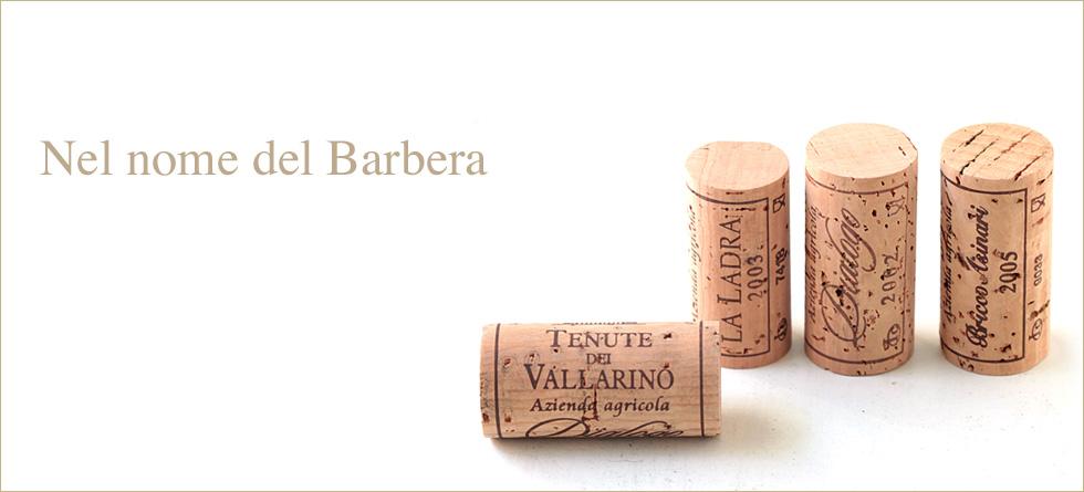 vino_piemonte_barbera.jpg